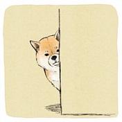 2017最新卡通动物可爱头像大全
