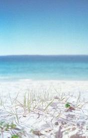 靓丽海边风景唯美皮肤图片精选