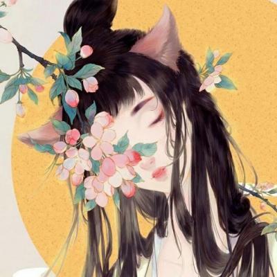 爱情小说《遇见花开遇见你》最新完整版全文在线阅读